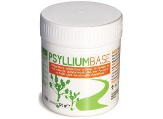 PSYLLIUM BASE POLVERE 120 G